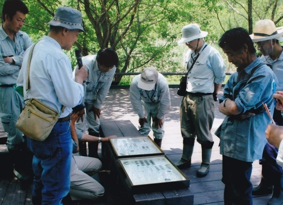 麻機湿原を保全する会