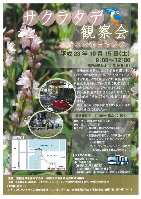 20161015サクラタデ観察会.jpg