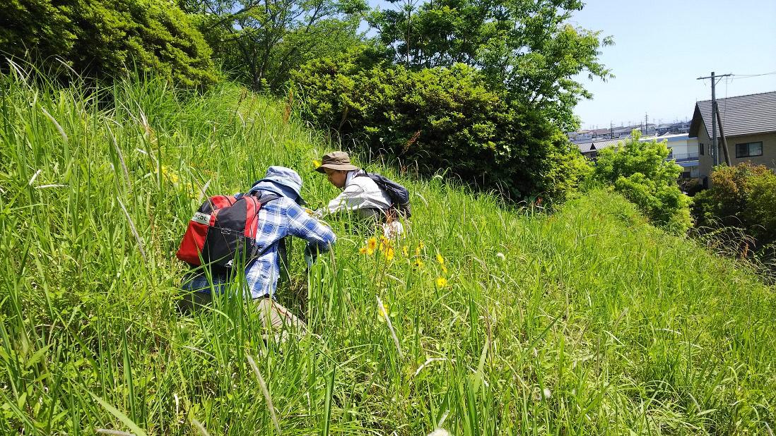 https://www.shizutan.jp/learning/2019/06/10/images/DSC_2340.JPG