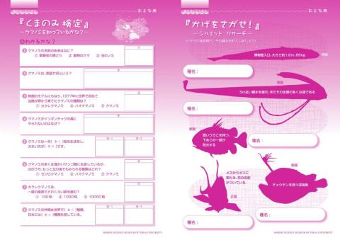 おとなピンク5-6p.JPG