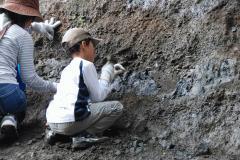 久能山の化石DSC_0054k.jpg