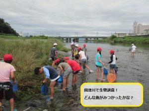 興津川を体験しよう