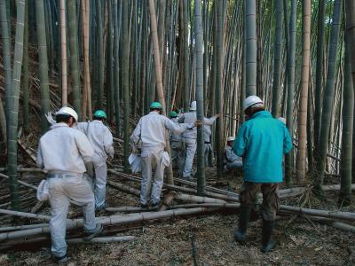 放置竹林で植生調査をする高校生.jpg