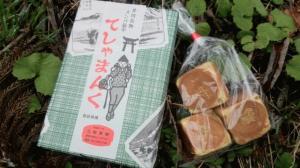 井川写真2.jpg
