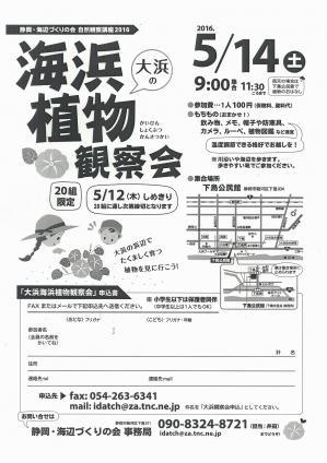 大浜の海浜植物観察会(画像).jpgのサムネイル画像