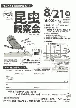 昆虫観察会(画像).jpg