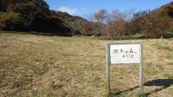 若竹幼稚園1.JPGのサムネイル画像