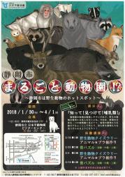 静岡市まるごと動物園⁉.png