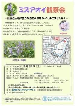 ミズアオイ観察会-1.jpg