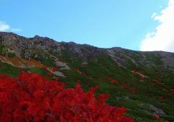 南アルプス 荒川岳紅葉.jpg