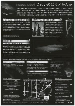 くらやみの覇者チラシ裏.jpg