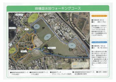 R3サクラタデ観察会-2 (1).jpg