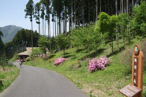 高山・市民の森.JPG