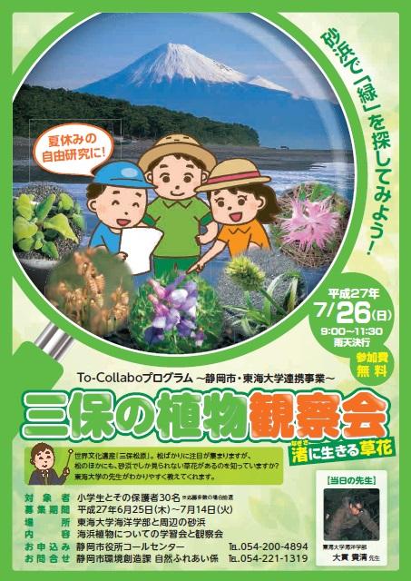 三保の植物.jpg