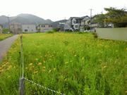 001-040514tsutsumicho02.JPG
