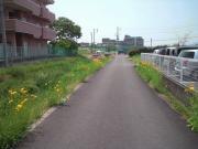 012-240517toibashigawa01.jpg