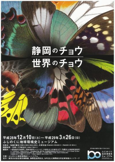 静岡のチョウ、世界のチョウ表.jpg
