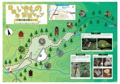 小鹿の森公園コース(マップ).jpgのサムネイル画像